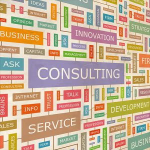 Business Consulting and Services